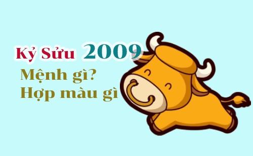sinh năm 2009 mệnh gì