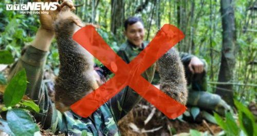 Cấm săn bắt dúi rừng tự nhiên